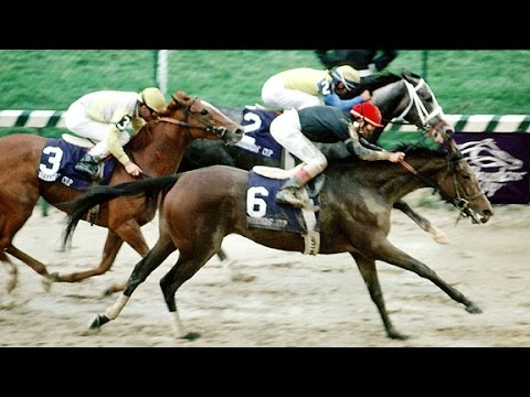 The Breeders' Cup - Ten Great Champions