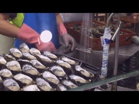 Oyster shuking at Sydney fish market
