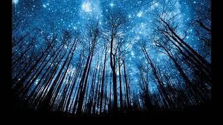 В ноябре можно будет увидеть звездопад Леониды!