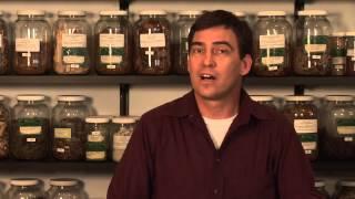Herbal Appetite Supressants