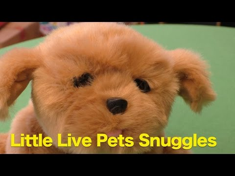 Little Live Pets - Snuggles My Dream Puppy Review, Cute Puppy With Soft Fur!