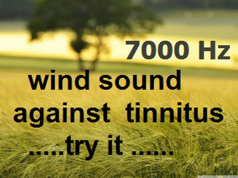 One hour wind at 7000 Hz as sound therapy for tinnitus