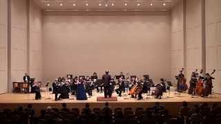 7. ヴァイオリン協奏曲 ルイ・シュポーア : ヴァイオリン協奏曲第2番ニ短調より第一楽章