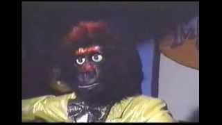 The New Rock-afire Explosion - Double in Size Video