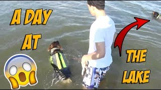 A DAY AT THE LAKE w/ THE DOGS!! *VLOG* (SUPER FUNNY)