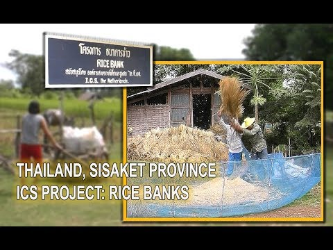 Thailand, Sisaket, rice banks to help farmers and schools