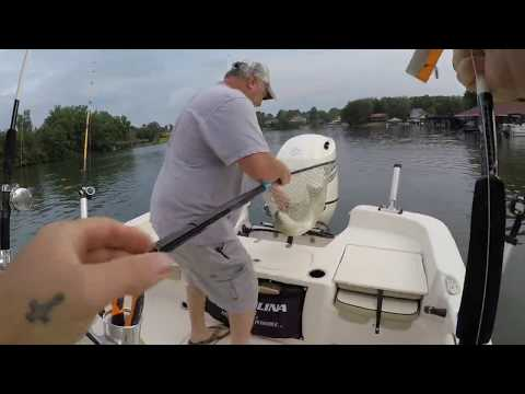 Striper Fishing On Smith Mountain Lake - Episode 1
