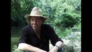 Kevin Ayers - Impressions de Malaisie 2/3 (English version)