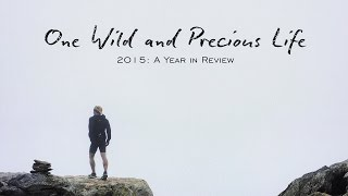 One Wild and Precious Life | A Look Back at 2015