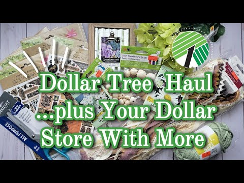 Dollar Tree Haul July 2020 || Plus Your Dollar Store With More
