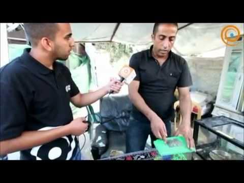 زمن برس مع خبير الافاعي الفلسطيني جمال العمواسي طوارىء الافاعي 0597827955