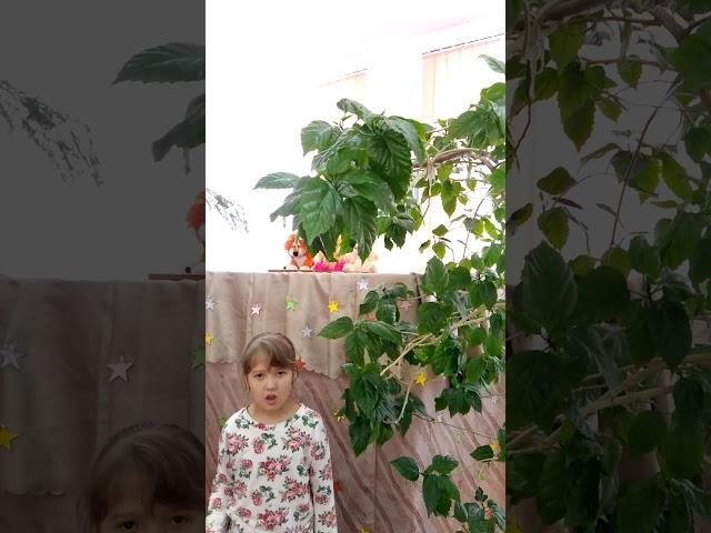 Изображение предпросмотра прочтения – центральнаядетская читает произведение «Летняя гроза» В.Я.Брюсова