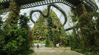 Wilkinson Eyre's award-winning Gardens by the Bay in Singapore
