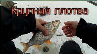 Крупная плотва на безмотылку Рыбалка по последнему льду на реке Безнасадочная мормышка в деле