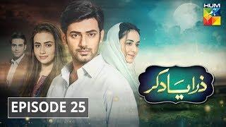 Zara Yaad Kar Episode 25 HUM TV Drama