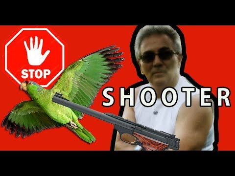 THIS GUY WANTS TO SHOOT PARROTS!
