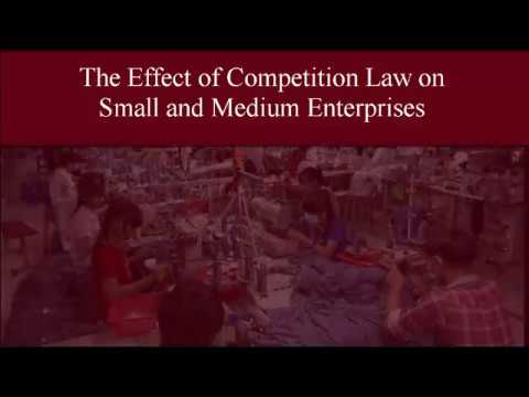 Competitition Law in the Service of Small and Medium Enterrprises (SMEs)
