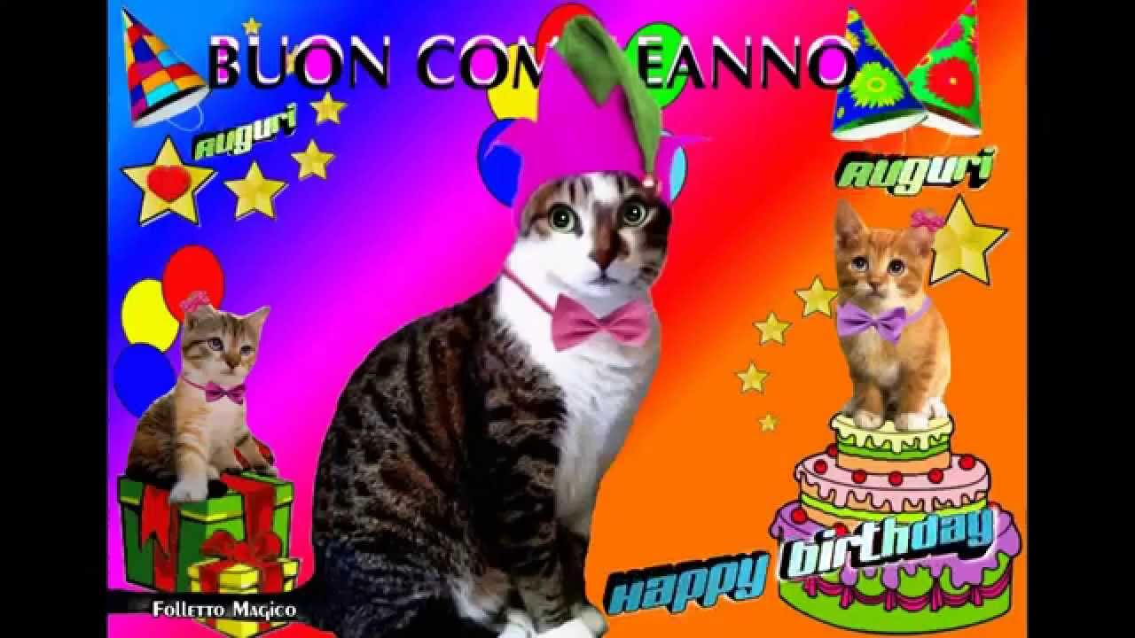 Favorito Micio buon compleanno gatti talking cats folletto magico happy  EG57
