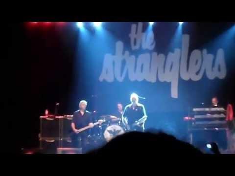 The Stranglers Golden Brown 29 August 2015 Fiesta City Verviers