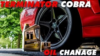 homepage tile video photo for Terminator Cobra Oil Change