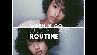 Wash N' Go Curly Hair Routine