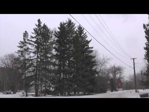 WAREY Icehouse residency Trailer