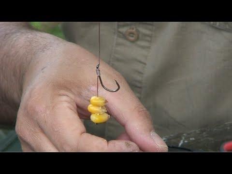 Les thermos pour la pêche les rappels