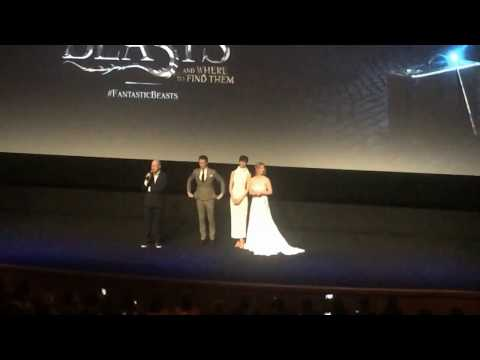 Fantastic Beasts and Where to Find Them World Premiere - Speeches