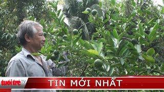 Tỷ phú cây giống xứ cù lao Vĩnh Long