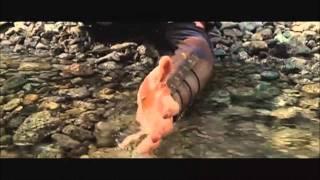 Percy Jackson and the olympians: the lightning thief - Hero
