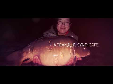Earith Lakes Fisheries - The Trout Lake Syndicate