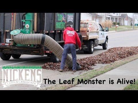 Billy Goat DL3701VE Debris Loader Making Quick Work Of Fall Clean Ups