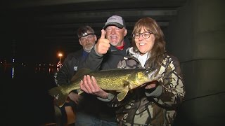 Night Bite Walleyes on the Menominee River