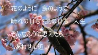 花のように鳥のように 桂銀淑(계은숙) 作詞:阿久悠 作曲:杉本眞人 ...