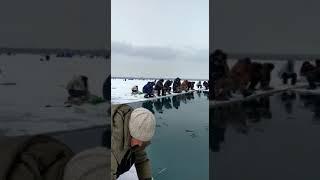 Рыбылка Капчагай