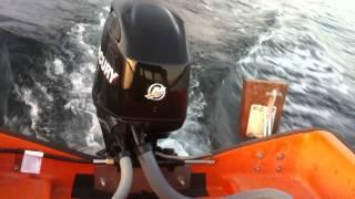 Mercury 50 efi outboard
