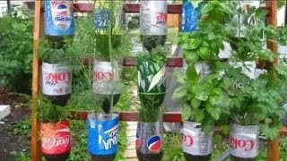 Best Method to Grow Any Plant in Plastic Bottle   Re-use Waste Bottle as Wall Hanging Planter