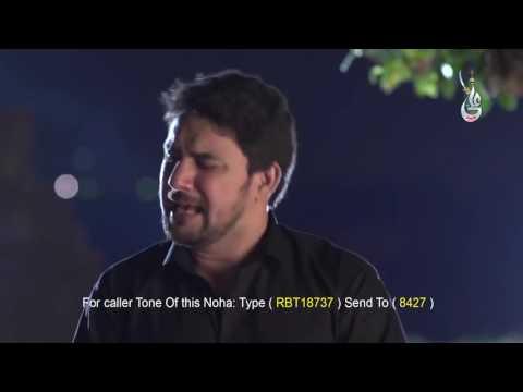Farhan Ali Waris New 2017 Nohay (Abbas Kahan Ho Bhai) BY WAQAS SANDHU.