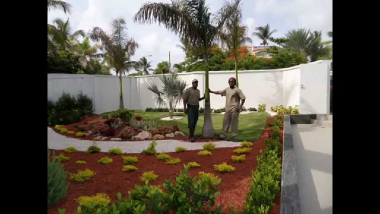 Landscaper From Jamaica One Of The Best In The Island Youtube