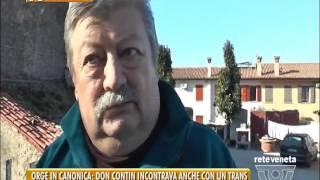 TG PADOVA (19/01/2017) - ORGE IN CANONICA: DON CONTIN INCONTRAVA ANCHE CON UN TRANS