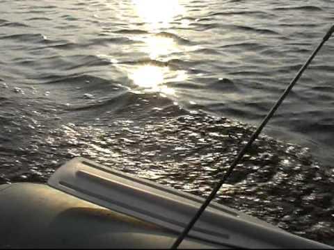 рыбалка на реке орлик