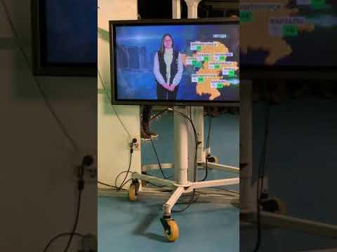 7Д на 31 канале