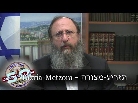 Weekly Torah Portion: Tazria-Metzora