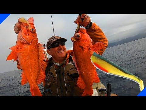 How To Rig Swimbaits For Lingcod And Rockfish