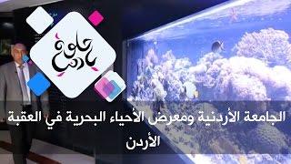 الجامعة الأردنية ومعرض الأحياء البحرية في العقبة