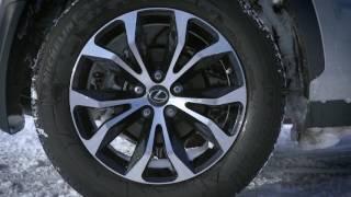 Winter vs All Season - Lexus Precision Service