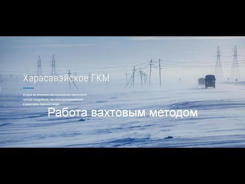 Работа вахтой на севере + «Сила Сибири-2»