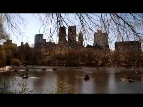 New York City - In the Mood by Robert Plant
