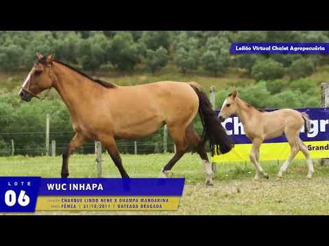 LOTE 06 - WUC INHAPA
