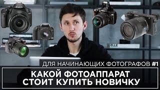 начинающий фотограф   Какую камеру купить новчику?